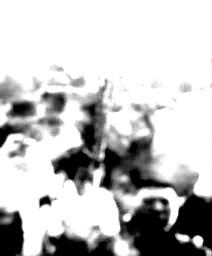 ceremonie-portesspanspan-styleline-height-208px.jpg